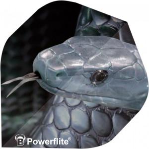 BULLS Powerflite Standard A-Shape   A-Standard